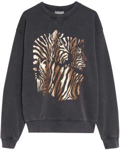 Sw zebra dark grey
